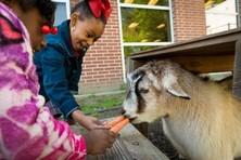 Girls feeding a goat a carrot