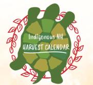 The Indigenous NH Calendar