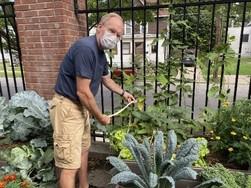 Volunteer tends to school garden