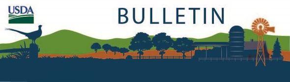 Bulletin Masthead