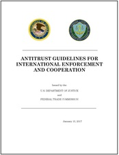 International Antitrust Guidelines