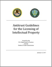 IP Guidelines