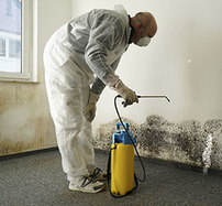 A guy wearing protective gear while removing mold.
