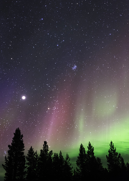 The northern lights in a starry sky.