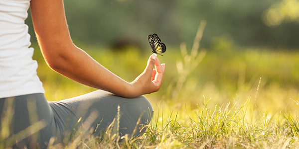 A butterfly perched on a hand in the meditative position in a field.