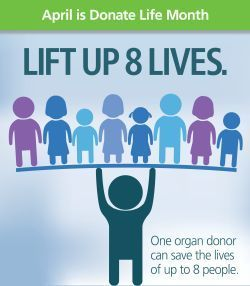 April is Donate Life Month. One organ donor can save the lives of up to 8 people. clipart of one person holding up 8 others.