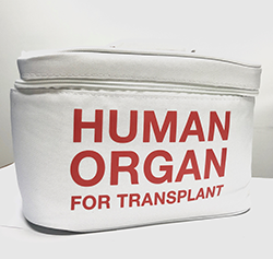 bag with a label that reads human organ for transplant
