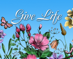 image of wildflowers with the text give life