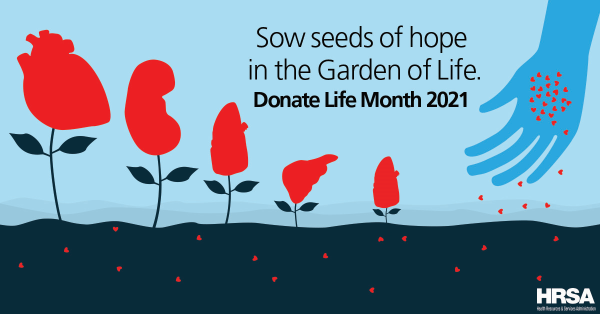 Sow seeds of hope in the garden of life. Donate Life March 2021. photo of a person dropping seeds in a garden, where organs are growing.