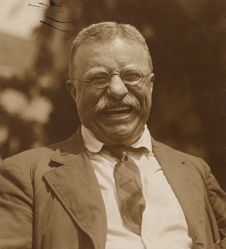 President Theodore Roosevelt is shown in 1910 after he had left the White House. (Library of Congress Prints and Photographs Division)