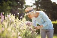 Senses can indicate dementia risk in older adults