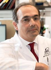 Dr. Ali Gharavi