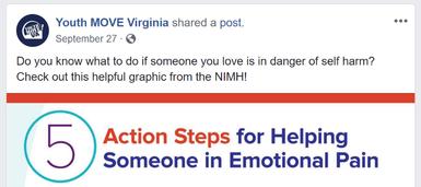 NAMI VA Youth Move Facebook post