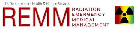 REMM Logo