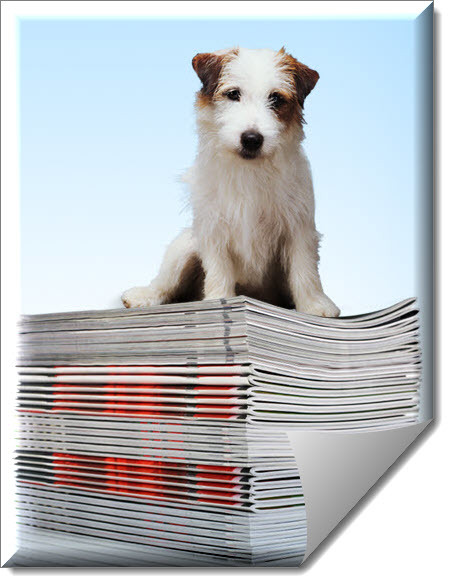 Tugger, DOCLINE's canine mascot sitting on a stack of journals