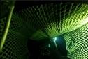 LED nets