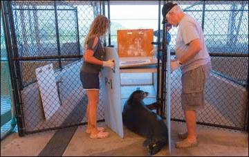 Monk Seal Rehab Facility v2