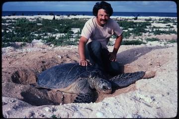 George and Sea Turtle