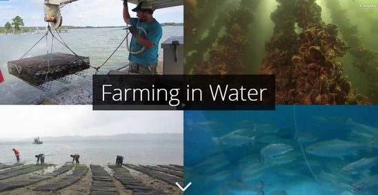 Farming in Water Story Map
