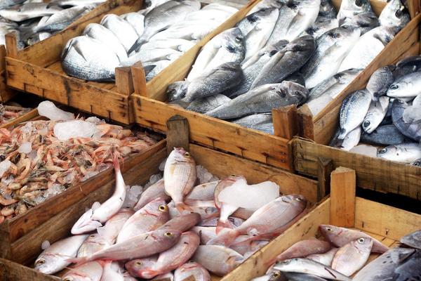 Shrimp and fish at a market