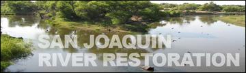 San Joaquin Salmon