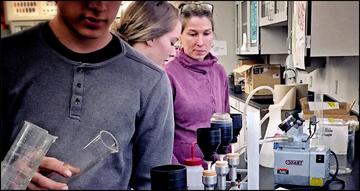 Scientist Teacher SEE partnership
