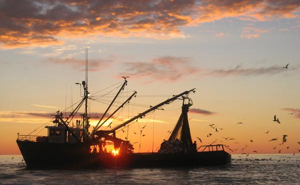 Fishing vessel at sunset.