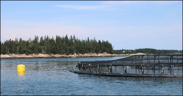 Marine Net Pen Aquaculture