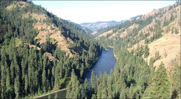 Forest Service Plan