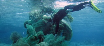 marinedebris
