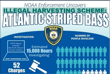 NOAA OLE Infographic