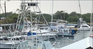 Hawaii charter fishery