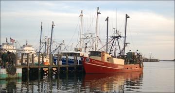 Northeast Groundfish vessels