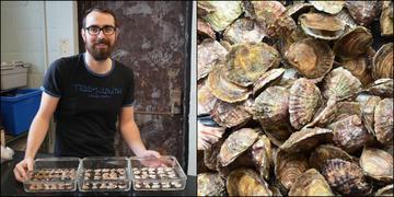 Milford postdoc shellfish
