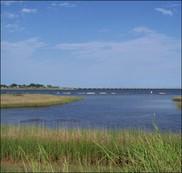 Deepwater Horizon Trustee Meetings