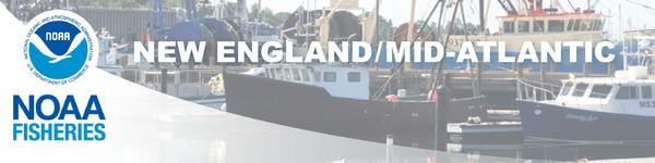 Boats masthead png