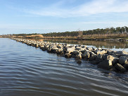 A rocky breakwater reef is lined up in front of a marshy island shore.