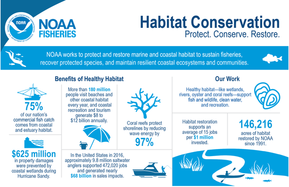 Infographic about habitat conservation. Content is at https://www.fisheries.noaa.gov/infographic/infographic-habitat-conservation