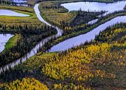 arcticland