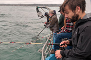 rec fish data