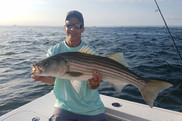 Striped bass are a favorite target for recreational fishermen.