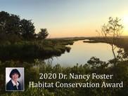 Picture of Nancy Foster over coastal habitat.