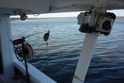 Electronic Monitoring, NOAA Fisheries