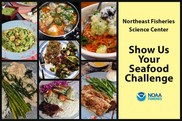 nefsc-show-us-your-seafood-challenge-graphic.jpg