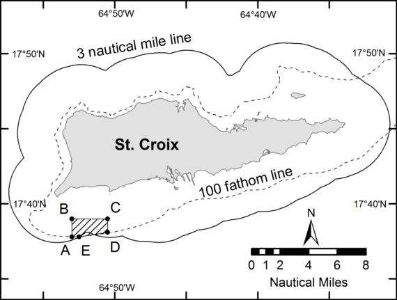 Mutton snapper spawning aggregation area off St. Croix, U.S. Virgin Islands.