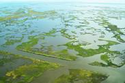 gulf restoration