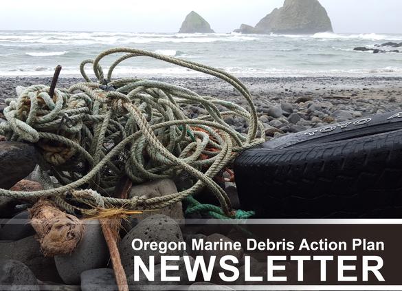 Marine debris on beach.