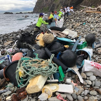 Volunteers removing debris from Makamaka'ole Beach.