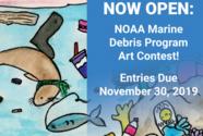 Art contest banner.