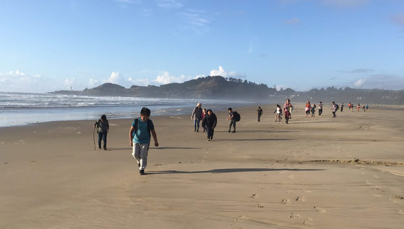 Summer campers exploring a beach.